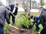 На території онкодиспансеру керівники області з лісниками висадили 25 сосен