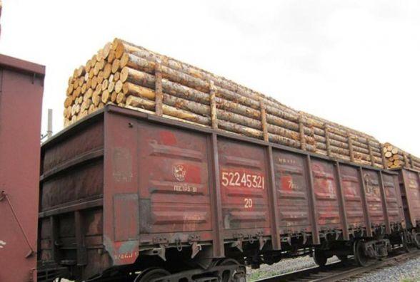 Український ліс заборонили вивозити за кордон