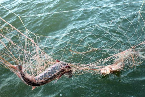 В Україні хочуть змінити правила для рибалок