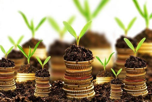 Землевпорядники Житомирщини спрямували до державного бюджету понад 176 тисяч гривень