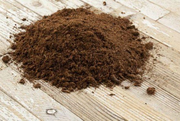 У чотирьох районах Житомирщини проведуть дослідження грунтів