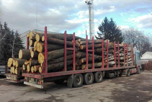 Житомирські правоохоронці затримали дві вантажівки з «нелегальною» деревиною
