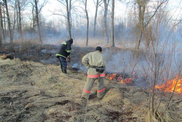 Рятувальники закликають жителів Житомирщини не спалювати сухостій