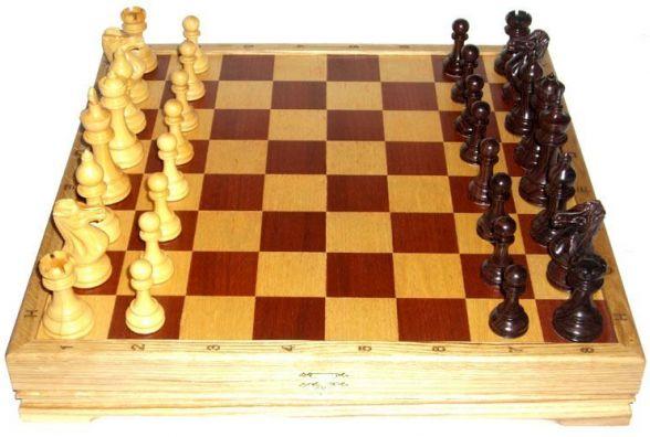 Житомирян запрошують взяти участь у турнірі з класичних шахів «Меморіал М.М. Тросмана»