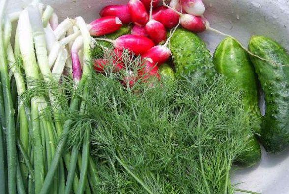 """У ранніх овочах з """"Житнього"""" ринку виявили підвищений рівень нітратів"""