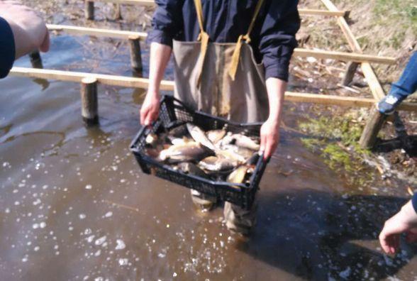 Корисні ініціативи: у Тетерів запустили рибу