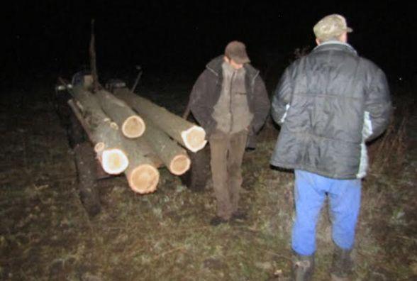 """На Житомирщині """"на гарячому"""" зловили лісокрадіїв"""