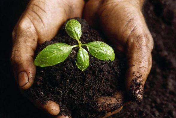 На Житомирщині для учасників АТО зарезервовано понад 9,5 тисяч гектарів землі