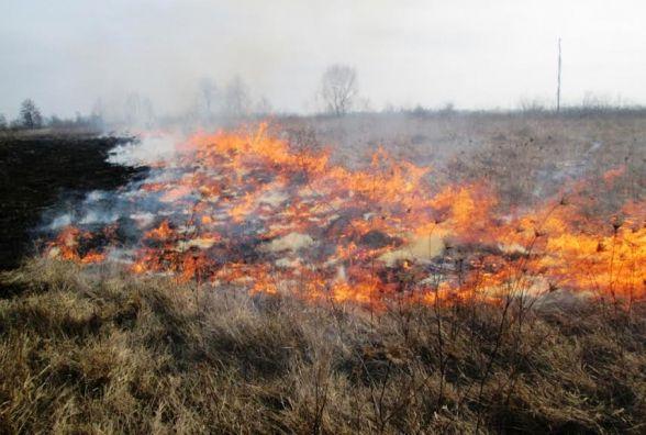 За добу на Житомирщині вигоріло понад 3 гектари сухостою