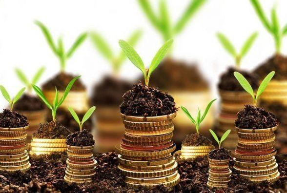 Місцеві бюджети Житомирщини поповнились майже на один мільйон гривень за надані землевпорядниками адмінпослуги