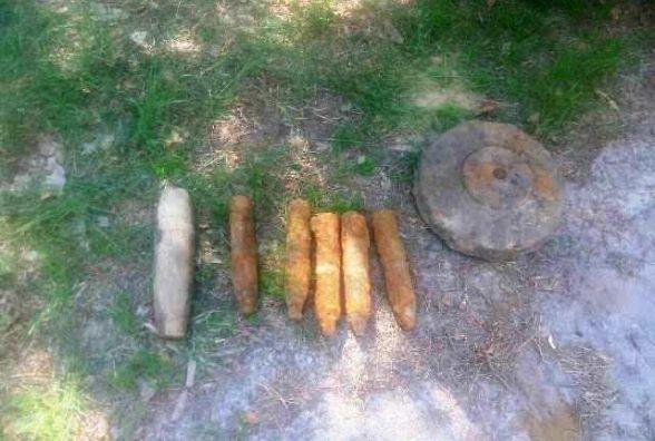На Житомирщині грибники знайшли у лісі 8 вибухонебезпечних предметів
