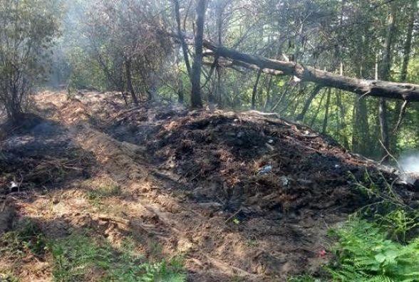 На Житомирщині через необережне поводження з вогнем вигорів 1 гектар сухостою