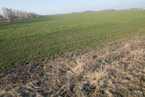 Прокуратура припинила неправомірне користування землями лісового фонду у Житомирському районі