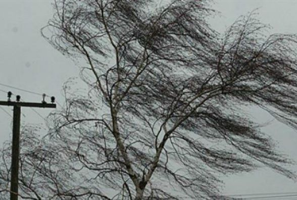Сьогодні вночі в області очікуються грози та шквальний вітер