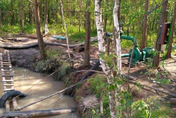 На Житомирщині викрили в лісі старательську станцію