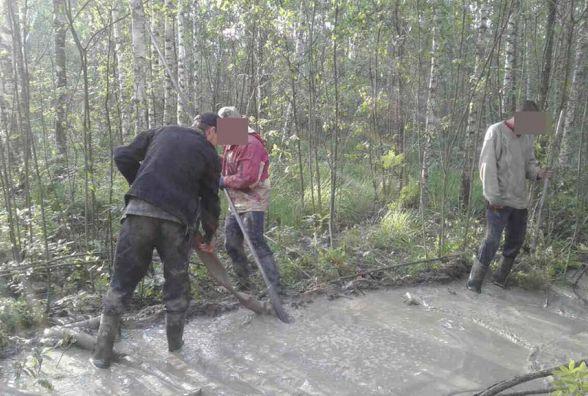 Чергову групу бурштиношукачів затримали на Олевщині