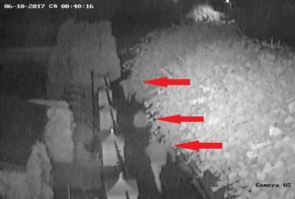 Руслан Мороз: нападение на меня не расследуется и превращается в «бытовуху»
