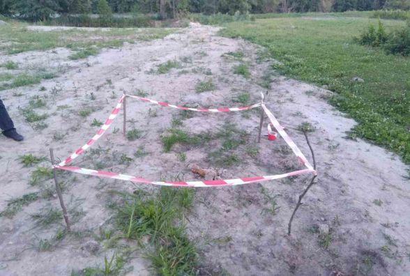 Вибухонебезпечна знахідка: на Житомирщині чоловік виявив артилерійський снаряд під час збирання ягід