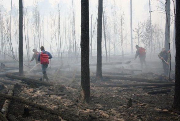 У Поліському заповіднику на Житомирщині нарешті ліквідовано пожежу