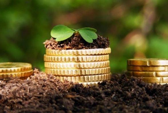 Майже 448 млн грн плати за землю отримали місцеві бюджети Житомирщини