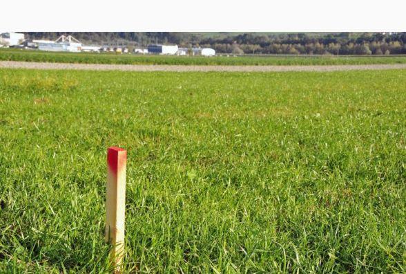 ОТГ Житомирщини отримають у власність 49 тис. га земель