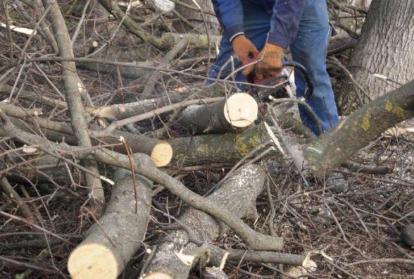 Рятувальники зрізали аварійні дерева, що загрожували, зокрема, й одній зі шкіл