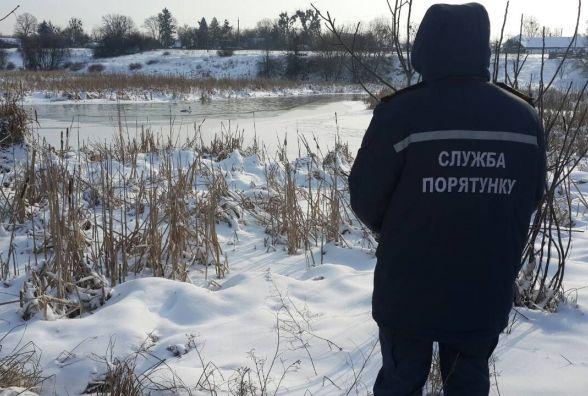 Бійці ДСНС  у Радомишлі врятували дикого лебедя