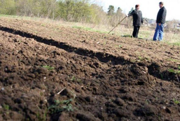 У березні земельні ділянки передадуть 3 ОТГ Житомирської області