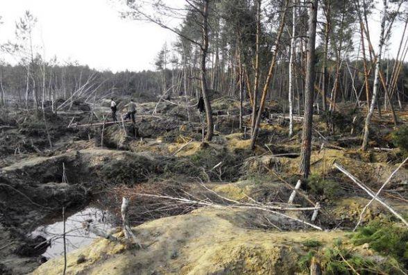 В Олевських лісах відновилося незаконне добування бурштину