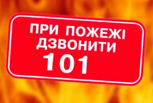 У селі під Житомиром під час пожежі жінка отримала опіки