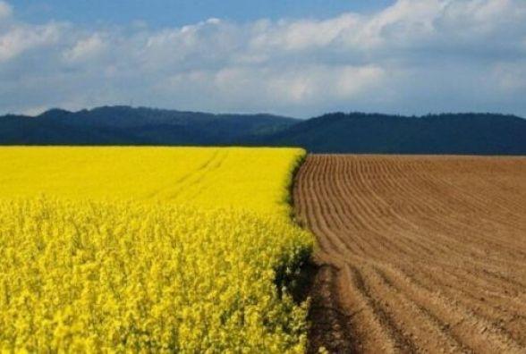 У І кварталі до бюджетів Житомирщини надійшло майже 5 млн грн від продажу земель несільськогосподарського призначення