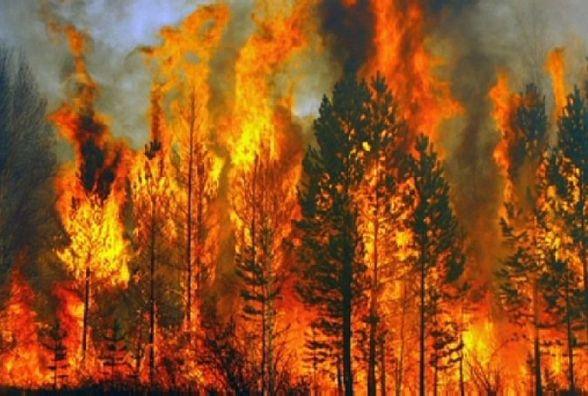 Під час пожежі в Ружинському районі загинув 73-річний чоловік