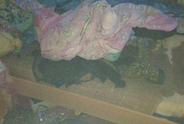 У Коростені під час пожежі в квартирі врятовано власника