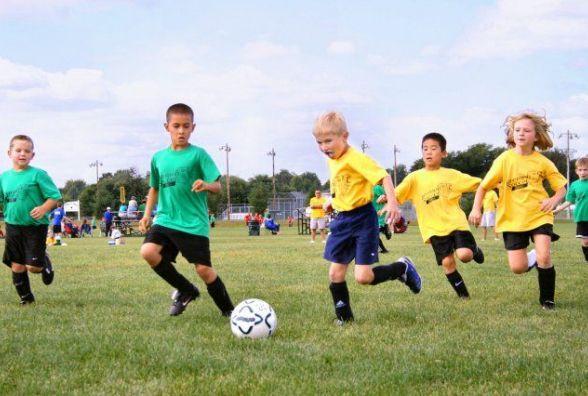 31 юний спортсмен Житомирщини навчатиметься на спортивному відділенні у ліцеї для обдарованих дітей