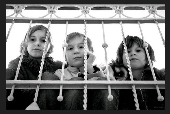Житомирские чиновники покрывают разврат в детских домах: активисты бьют тревогу