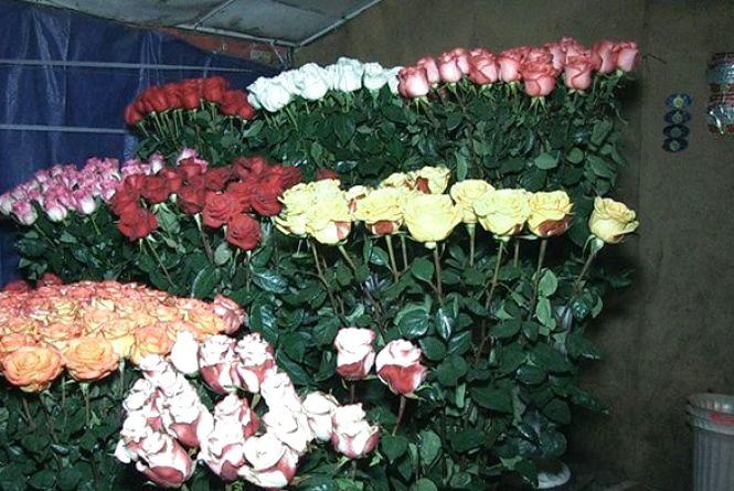 Влада Житомира збирається жорстко діяти з квіткарями на Московській