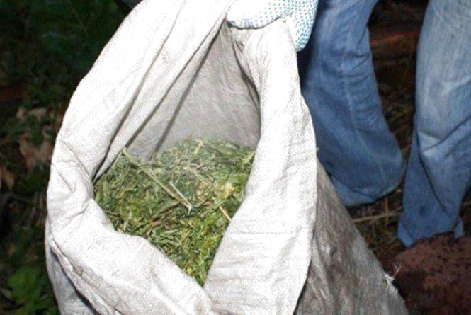 У Житомирській області затримали безхатька з Дніпропетровщини, котрий зберігав близько 5 кг конопель