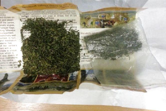 Під час обшуку в жителя Новоград-Волинського району поліцейські знайшли наркотики