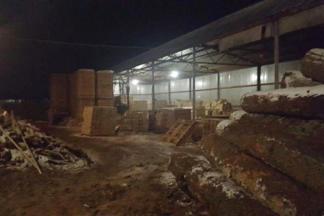 У Житомирському районі викрили нелегальну пилораму