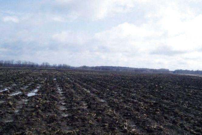 Агроформування Житомирщини розпочали підготовку до весняно-польових робіт