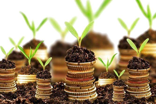 Землевпорядники Житомирщини залучили до місцевих бюджетів майже півмільйона гривень за надані адмінпослуги