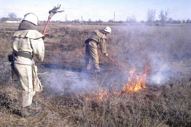 Рятувальники закликають не провокувати пожежі в екосистемах