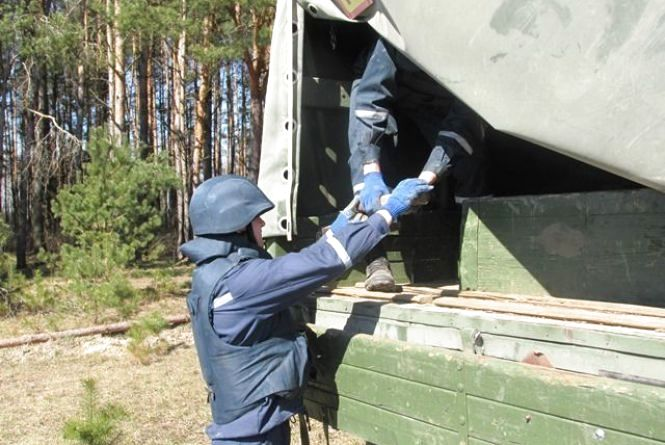 Відголоски війни: у Житомирському районі селянин знайшов у лісосмузі артснаряд