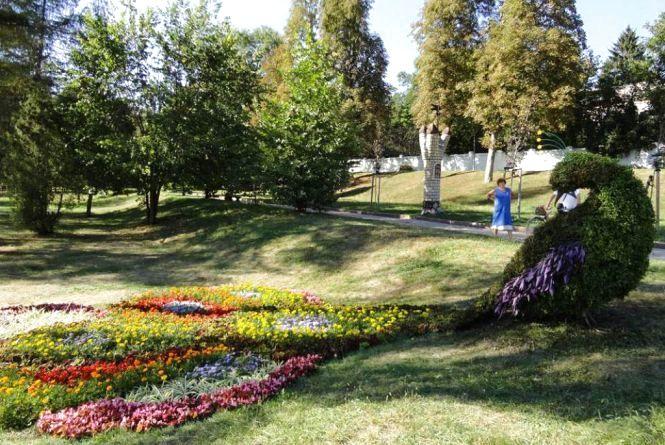 У Житомирі збільшиться кількість квіткових скульптур