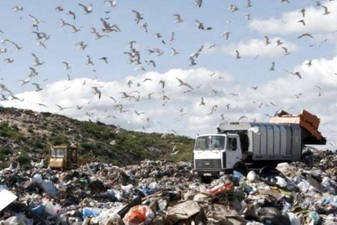 """""""Гастролі"""" львівського сміття: на Житомирщині затримали вантажівку з побутовими відходами"""