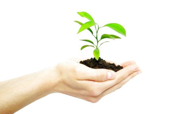 Податківці інформують: екологічний податок зріс