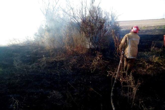 Рятувальники ДСНС закликають не провокувати пожежі в екосистемах!