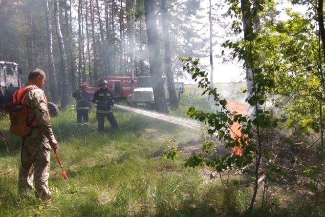 Рятувальники нагадують, як безпечно відпочивати в екосистемах