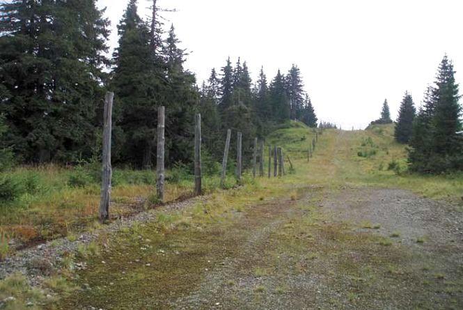 У прикордонних районах Житомирщини запроваджено додаткові режимні обмеження