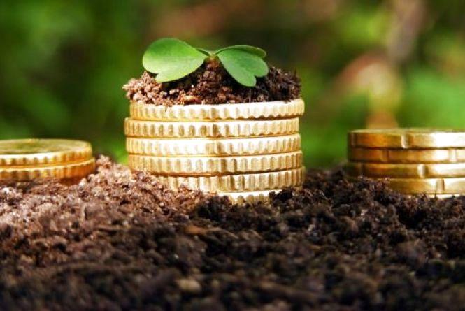 Українським аграріям вдвічі підвищили часткову компенсацію за кредитами